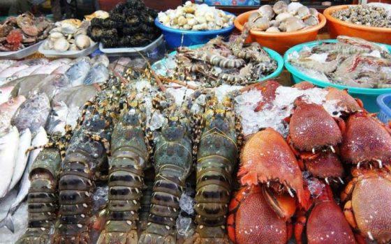 hải sản tươi sống top 8 món ăn đặc sản Vũng Tàu siêu ngon siêu rẻ