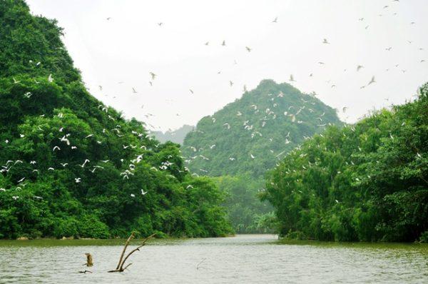 thung nham top 10 địa điểm du lịch ninh bình đẹp